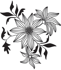 Black and white lines flowers wallpaper