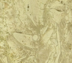 Classical s Collections Of Stone/Beige Stones 001