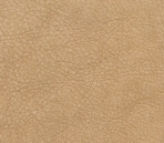 Fine 3D Texture Collections 40-Leather 43
